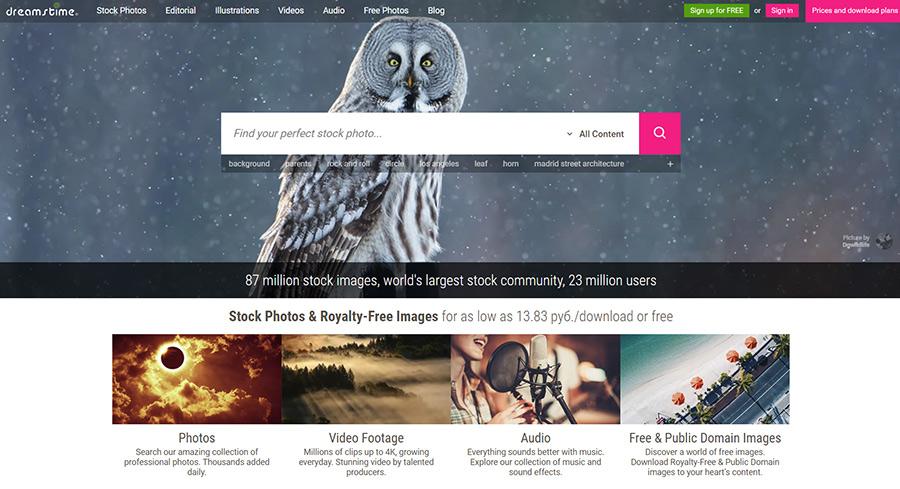 Как бесплатно скачать изображения с микростока Dreamstime.com?
