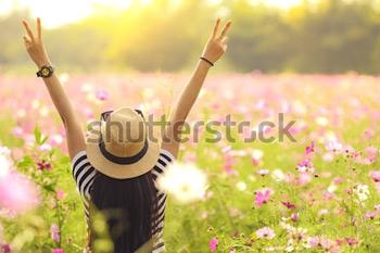 Вид сзади. Красивая девушка подняла две руки вверх в поле с цветками на закате. Концепция свободы. Винтажный цвет.