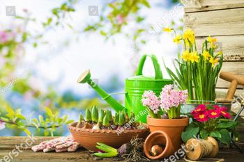 Садовые инструменты и весенние цветы на террасе в саду.