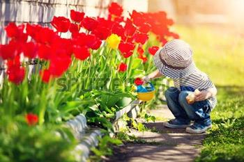 Маленький ребенок гуляя около тюльпанов на цветнике в красивейшем весеннем дне. Мальчик на улице в саду с лейкой