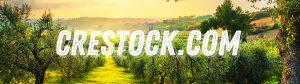 Crestock - Продать или Купить Контент. Новости. Статьи. Пошаговые инструкции.