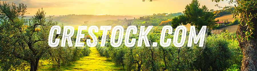 Купить и продать фотографии, видео, иллюстрации и музыку на микростоке фотобанке crestock.com